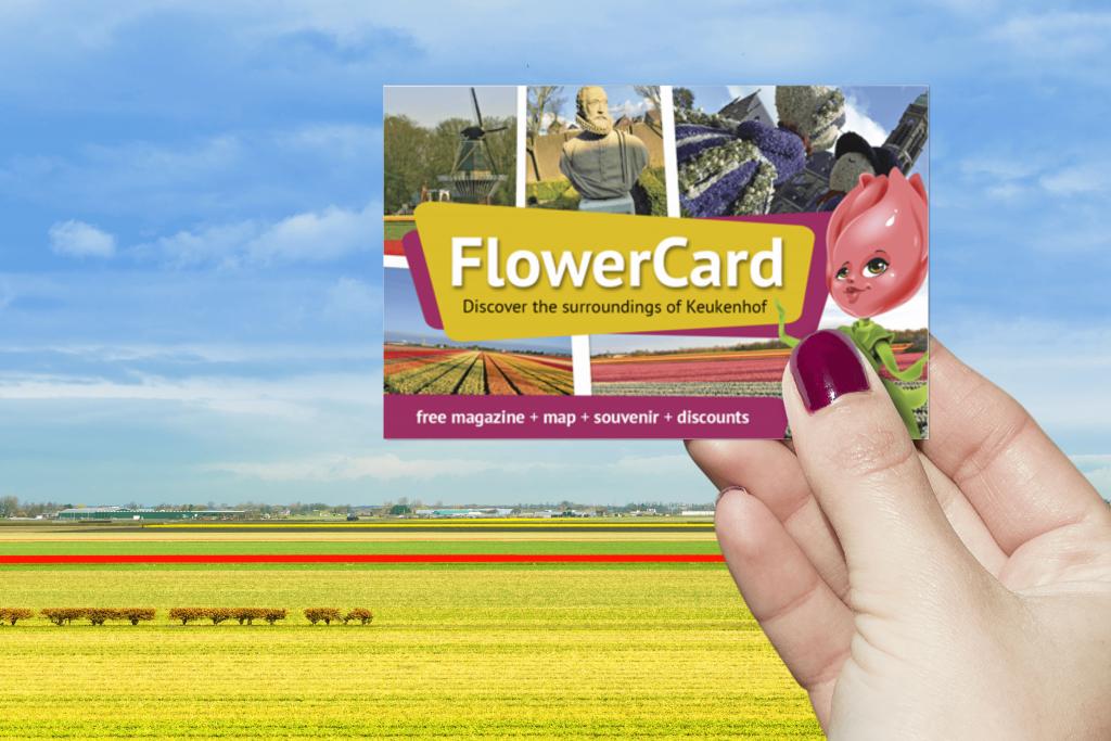 Flower Card Keukenhof