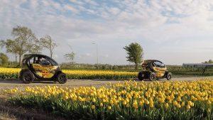 GPS autoroute door de tulpenvelden
